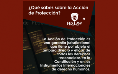 Do you know about the Protection Action?