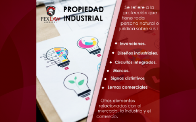 Intellectual Property Concepts