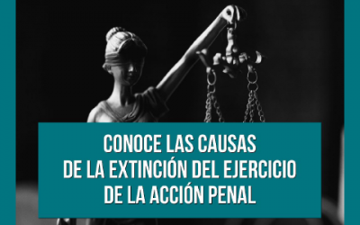 Causes for the termination of the exercise of criminal proceedings